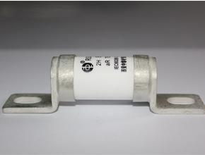 RS308-HB AC250V/DC170V 圆管式快速熔断器